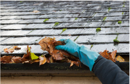 Gutter cleaning services in Brisbane
