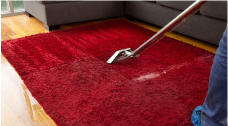 Carpet Cleaning in Moreton Bay